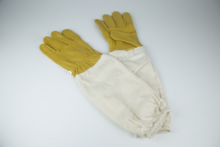 Lederen-handschoenen-Nr10